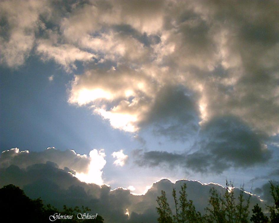 nature-memoirs-033.jpg